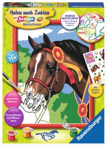 Ravensburger 285716 Malen Nach Zahlen Pferd Beim