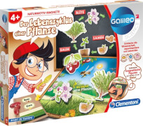 Clementoni Galileo- Der Lebenszyklus einer Pflanze